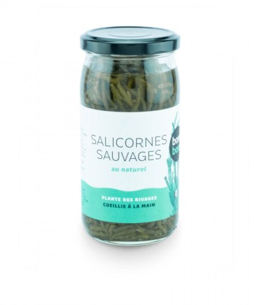 Salicornes sauvages au...